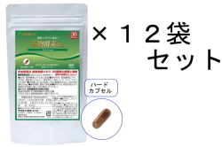 【送料無料】30日分 植物酵素DX/12袋セット