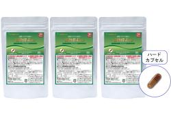【送料無料】30日分 植物酵素DX/3袋セット