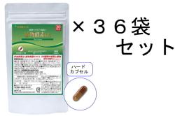 【送料無料】30日分 植物酵素DX/36袋セット